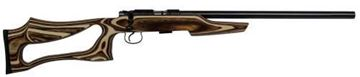 Picture of CZ 455 Varmint Evolution .17 HMR Bolt Action Hunting Rifle with Coyote Laminate and 5 Round Magazine