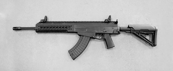 Picture of Firing Line Arms Modular Tactical Rifle