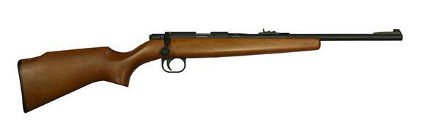 Picture of Rock Island Armory M14Y Youth Bolt Action 22 Long Rifle