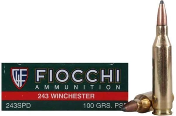 Fiocchi .243 Win Rifle Shooting Dynamics 100gr PSP - Box of 20