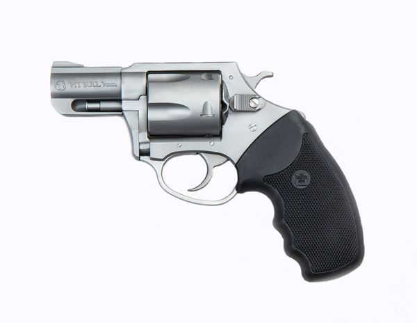 """Picture of Charter Arms Pitbull® 9mm 5rd 2.2"""" Barrel Stainless Steel Revolver"""